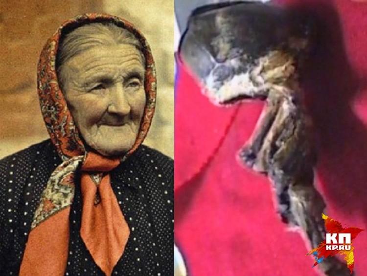 Тамара Просвирина пошла к колодцу за водой и нашла под сосной неведомую зверушку