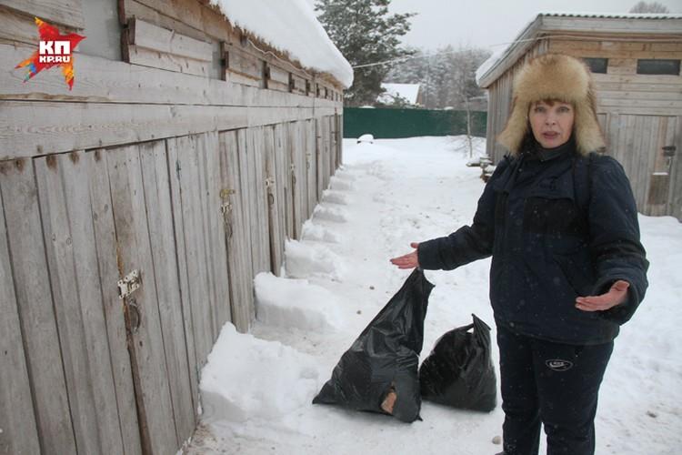 Зоозащитники давно знают об этом концлагере для собак и иногда привозят животным еду. Фото: Игнат РОМАНОВ