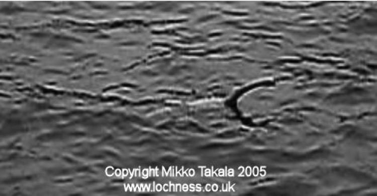 30 июля 2005 года в 17:14 Несси попала в объектив местного исследователя и тележурналиста Микко Такала. По его прикидкам, 4-метровое чудовище находилось примерно в 50 метрах от берега.