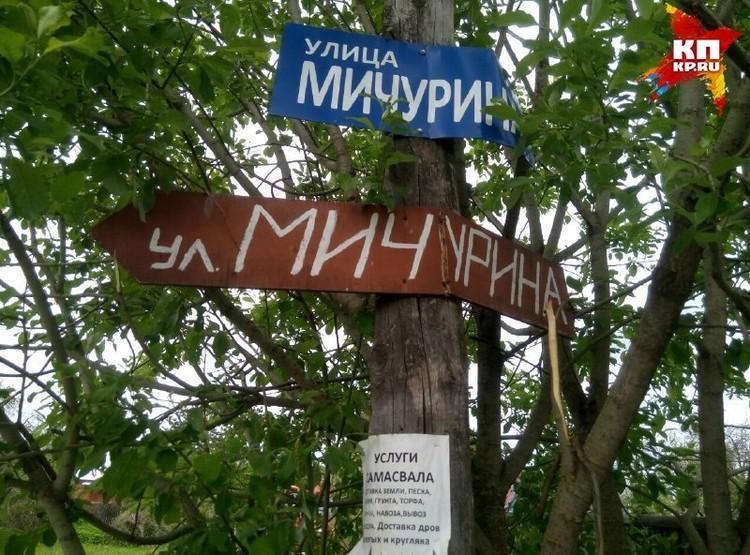Убийство произошло на улице Мичурина.