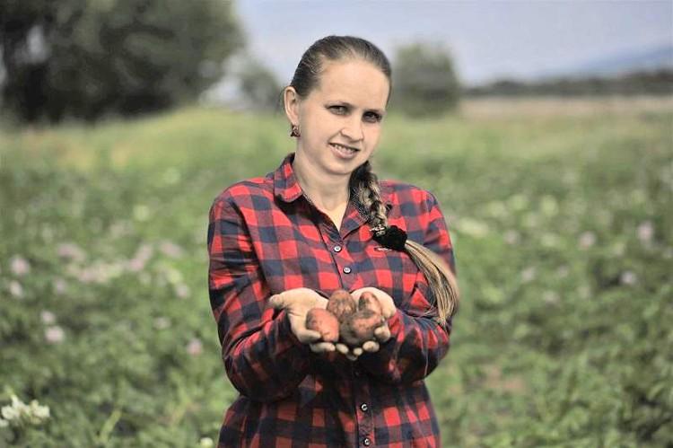 Уже сейчас земля приносит первый заработок. Фото: hcfe.ru