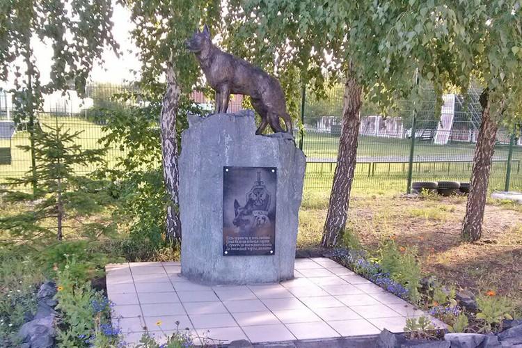 Вот так в 2009 году и появился памятник служебной собаке.