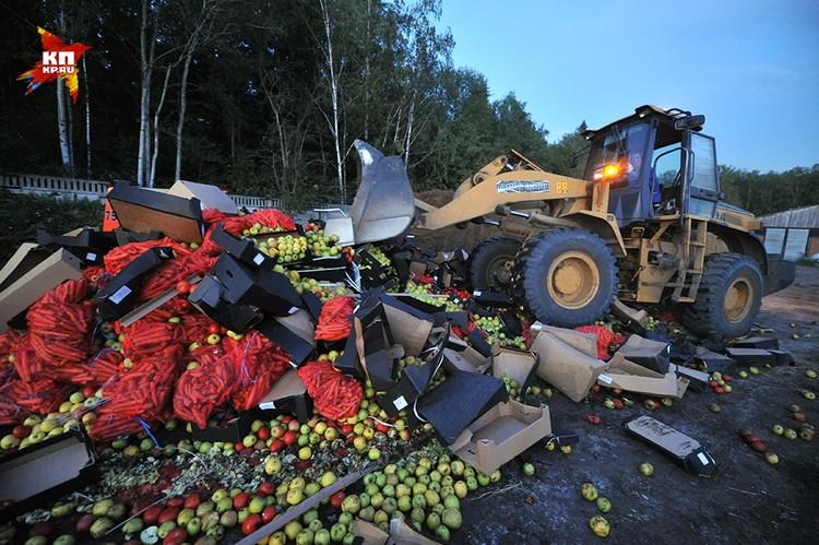 Уничтожение санкционных овощей и фруктов из Польши