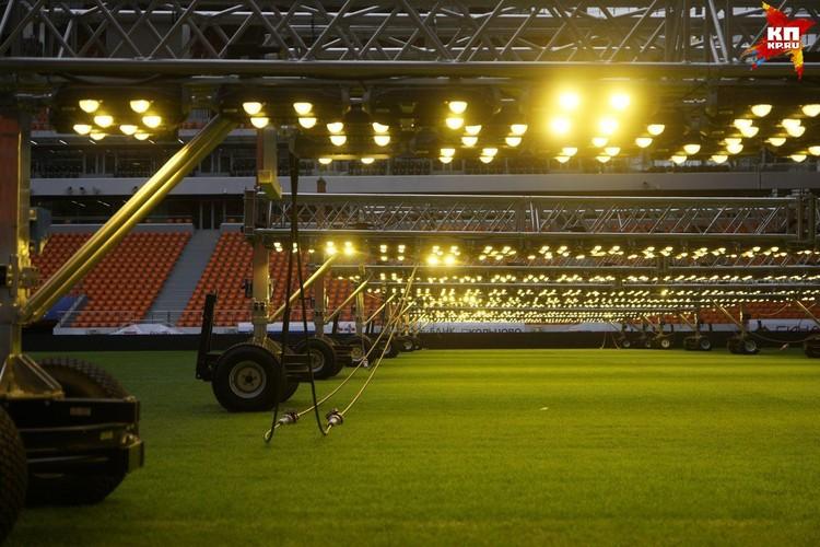 Такие лампы сейчас на екатеринбургском стадионе помогают расти траве на поле.
