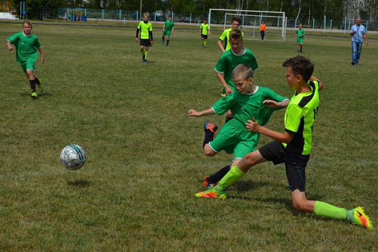 Развитие детского футбола, по мнению экспертов, должно стать основой для успешного выступления команд. Фото: Брянская областная Федерация футбола.