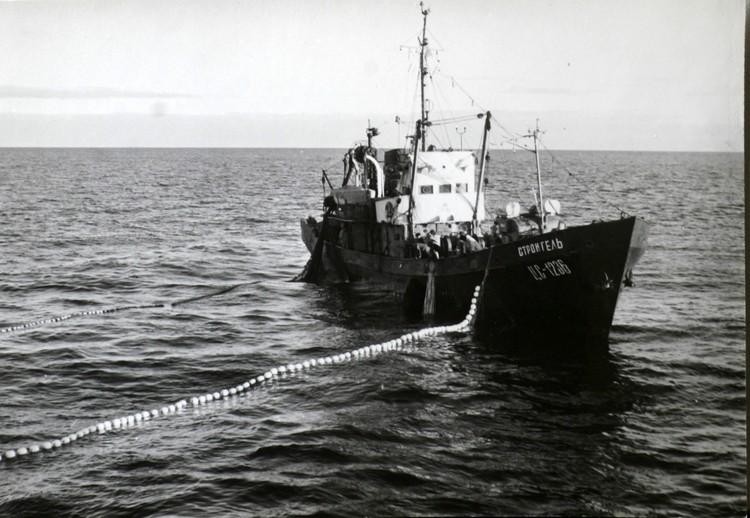 Ветеран отрасли Егоров за свою карьеру рыбака сменил много траулеров. Фото из личного архива Владимира Михайловича Егорова.