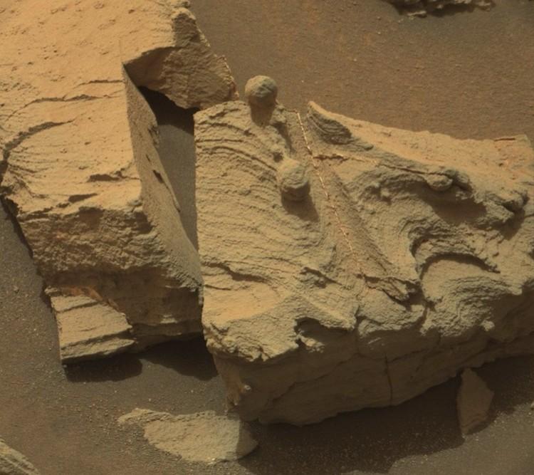 Марс: на срезе виды следы от дисковой пилы.