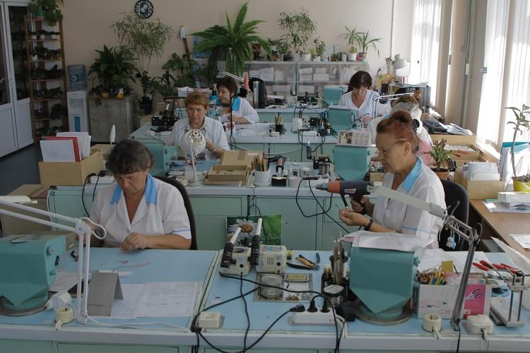 В рамках СЭЗ в городе создали больше 5,5 тысяч новых рабочих мест. Фото: sevastopol.gov.ru