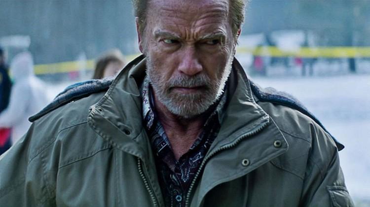 Арнольд Шварценеггер играет Романа Мельника.