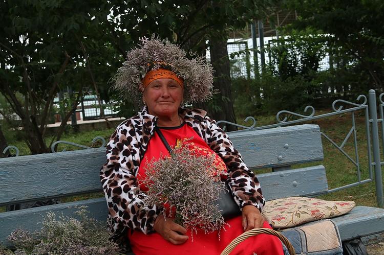 Любань трава из Крыма. Фото: Анастасия ЖУКОВА