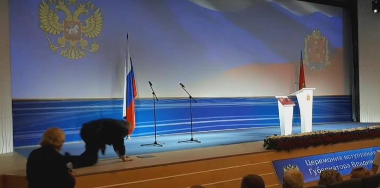 Кадр из прямой трансляции инаугурации губернатора Владимирской области.