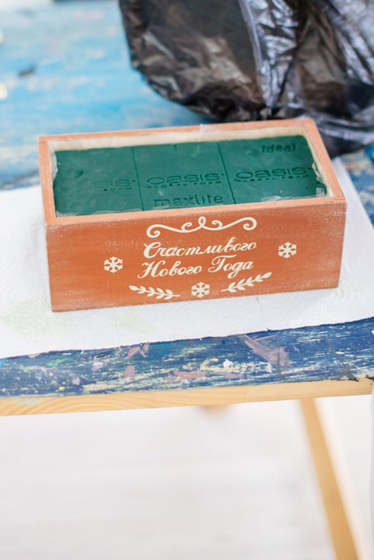 Специальная губка Оasis пропитывается водой и в целлофане помещается в коробочку. Фото: Екатерина ПАШНИНА.