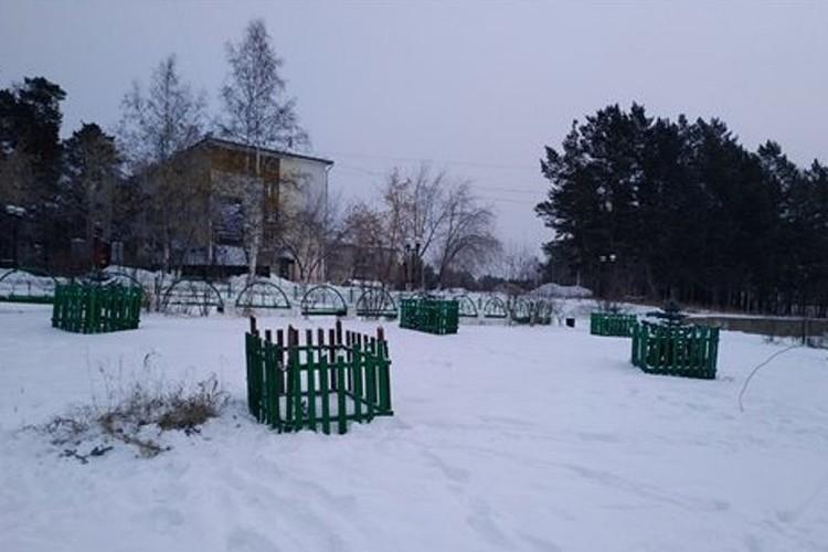В этом сквере появятся новые ели. Фото: пресс-служба мэрии Саянска.