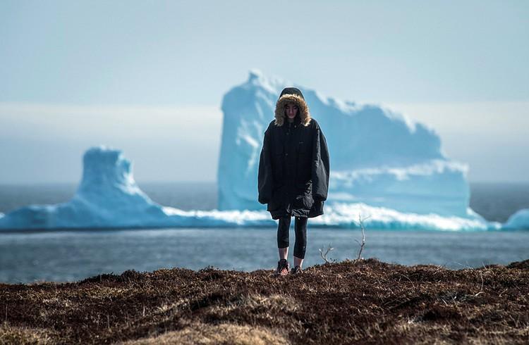 Полярные области теряют сейчас свои запасы льда в четыре раза быстрее, чем до 2000 года