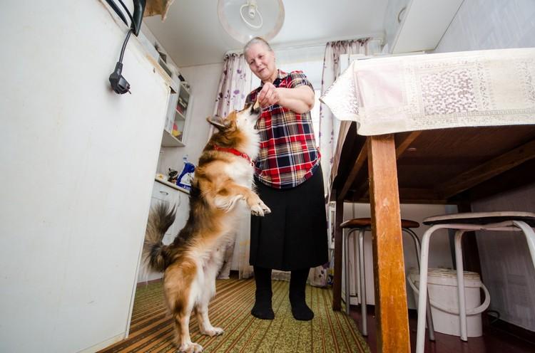 Пенсионерка пообещала, что теперь будет выгуливать собаку на поводке.