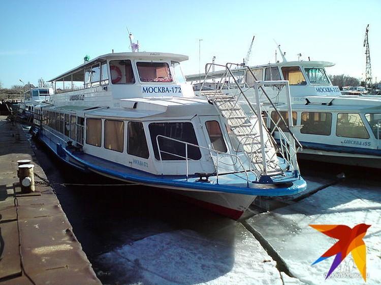 Капитан теплохода подошел к дрейфующей льдине с ювелирной точностью. Фото: соцсети