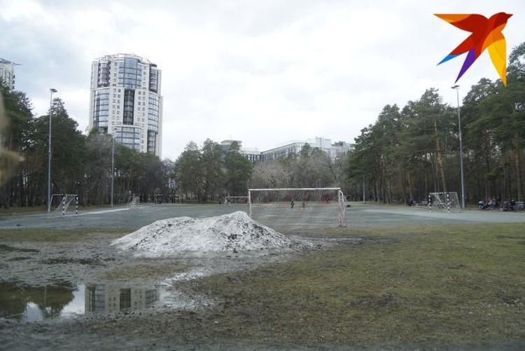 Чтобы в парке не образовывались большие лужи по весне, авторы проекта благоустройства предлагают сделать систему водоотведения в парке.