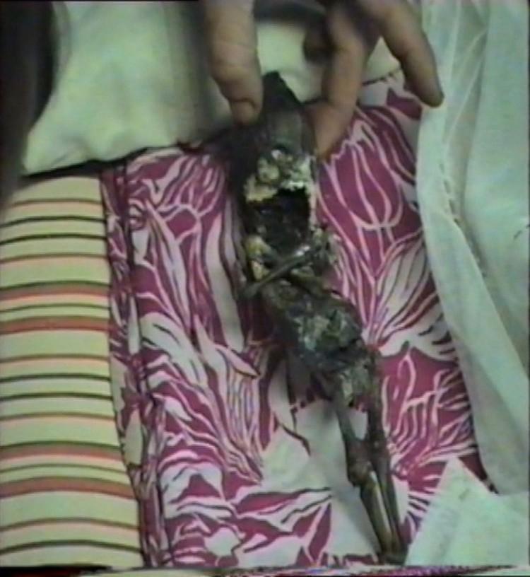Длинна мумии - 30 см
