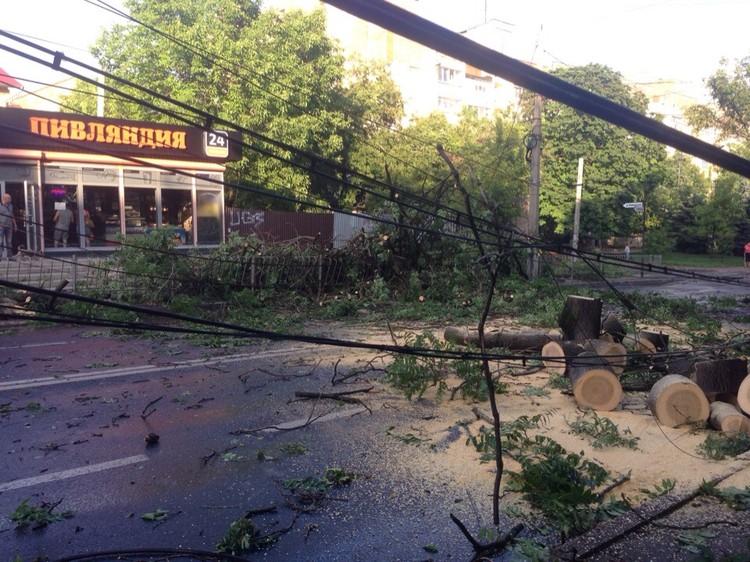 Коммунальные службы начали распиливать дерево, перекрывшее улицу Киевскую. Фото: Александра Рымарева