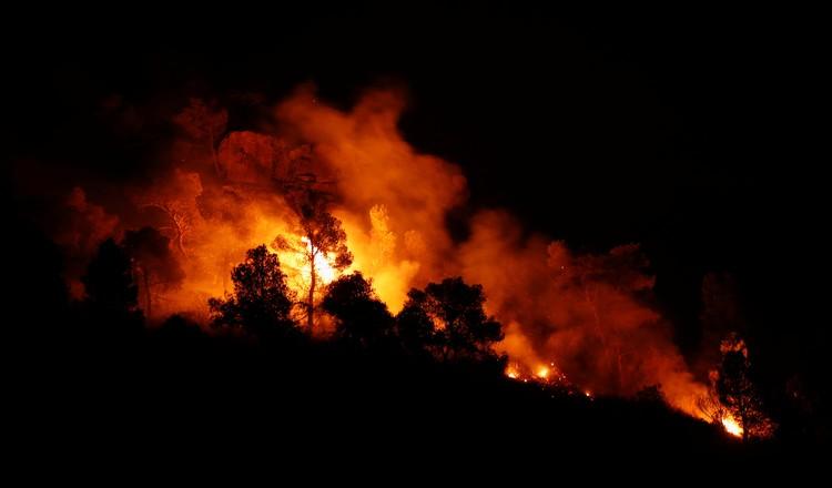Засуха обернулась лесными пожарами в Испании.