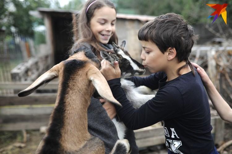 Дети любят возиться с животными.