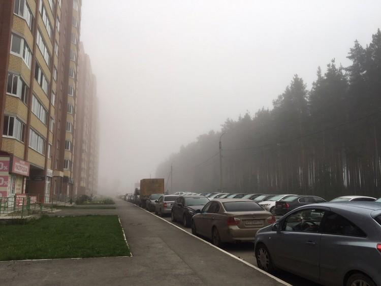 А вот такая картина сейчас в пригороде Екатеринбурга, в Березовском
