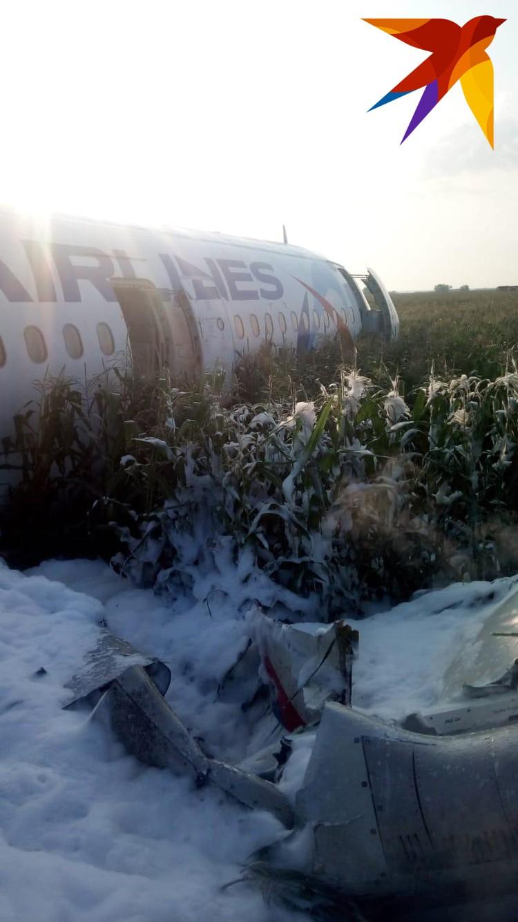 Самолет А-320 выполнял рейс из Москвы в Симферополь
