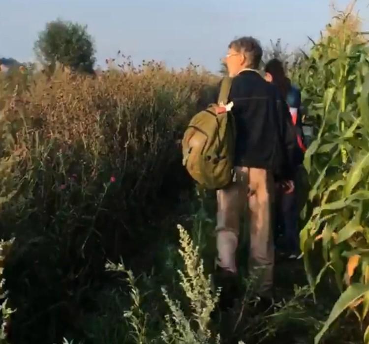 После вынужденной посадки пассажиры отправились по кукурузному полю к дороге. Фото: Борис Швайгер