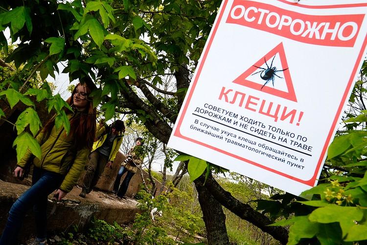 Объявление, предупреждающее о клещах, в городском парке. Фото Юрий Смитюк/ТАСС
