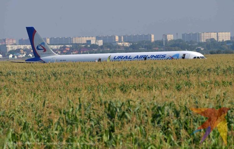 """Пассажирский самолет совершил жесткую посадку в кукурузном поле возле аэропорта """"Жуковский"""""""