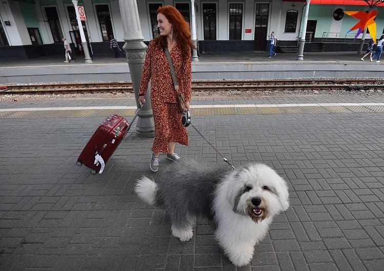 Да-да, собака поедет на праздник к другой собаке