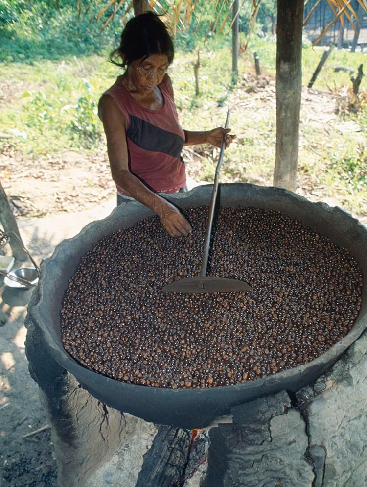 Семена гуараны по своему составу и действию похожи на кофе. Содержат примерно такое же количество кофеина