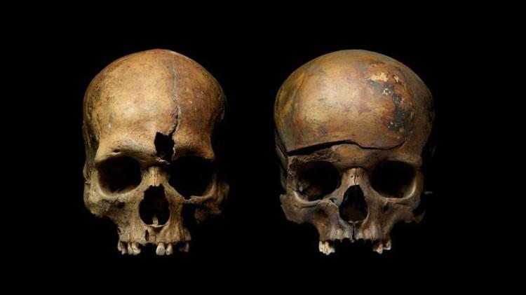 На скелетах нашли рубленые раны. Фото: archaeolog.ru