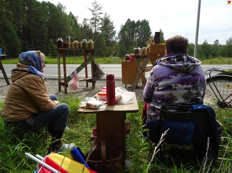 Для многих российских деревень сбор грибов-ягод стал чуть ли не основой экономики