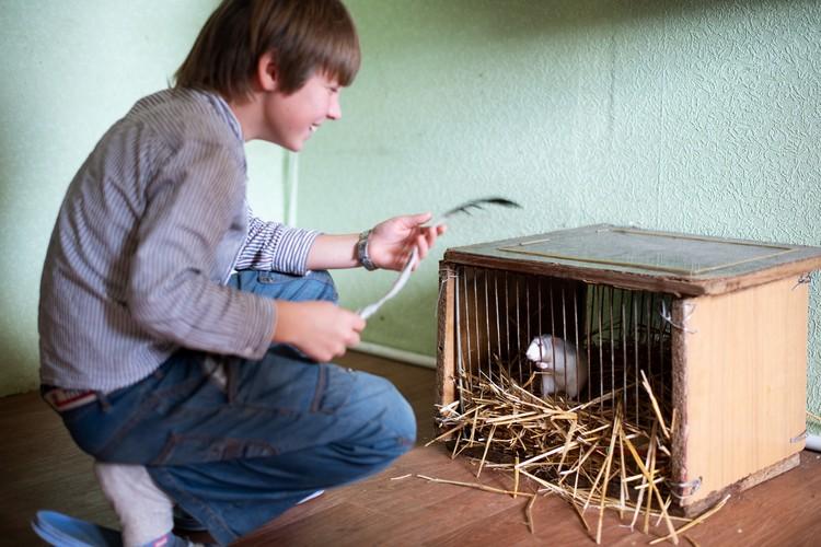 Костя любит петь и обожает животных