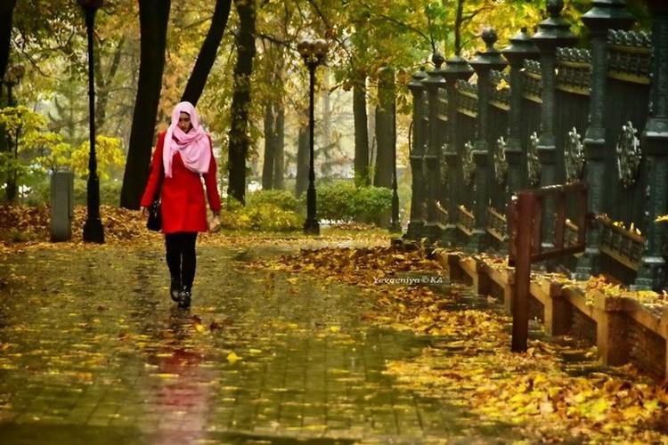 А вот на тротуарах листва может быть скользкой. Фото: Евгении Карпачевой
