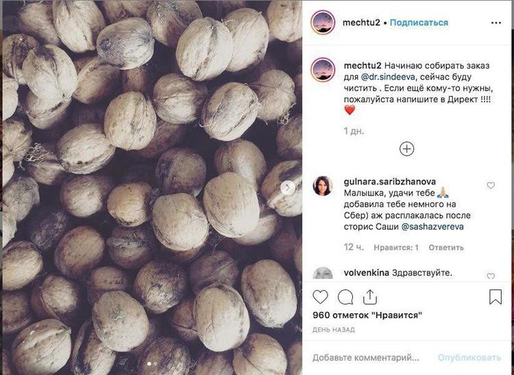 Мадина отчаялась найти средства в родном селе и стала продавать орехи в Instagram