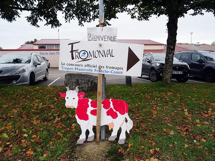Престижный международный конкурс Fromanva прошел в эти выходные во Франции уже 30-й раз