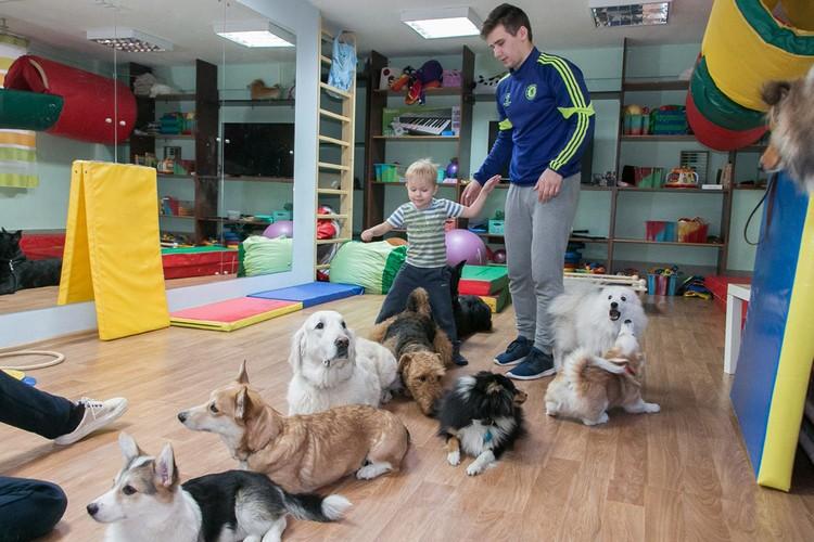 """Собаки всегда готовы поддержать детей в первых шагах... Фото: """"Дверь в лето"""""""