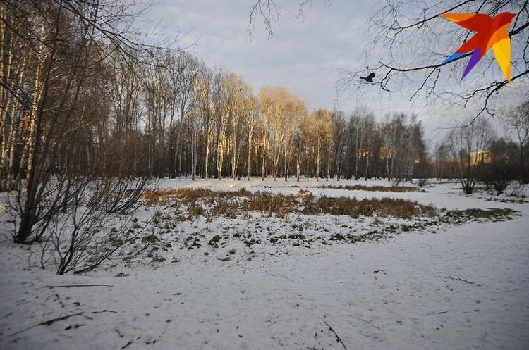 Парк, в котором, предположительно, был закопан труп мальчика