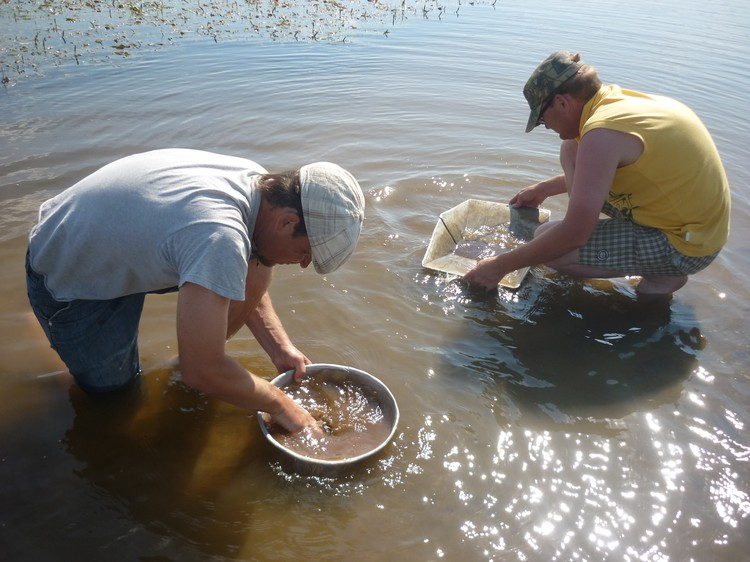 Промывка шлиха в реке на наличие знаков золота. Фото: героя публикации.