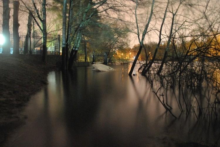 В Сестрорецке подтопило парк Дубки.