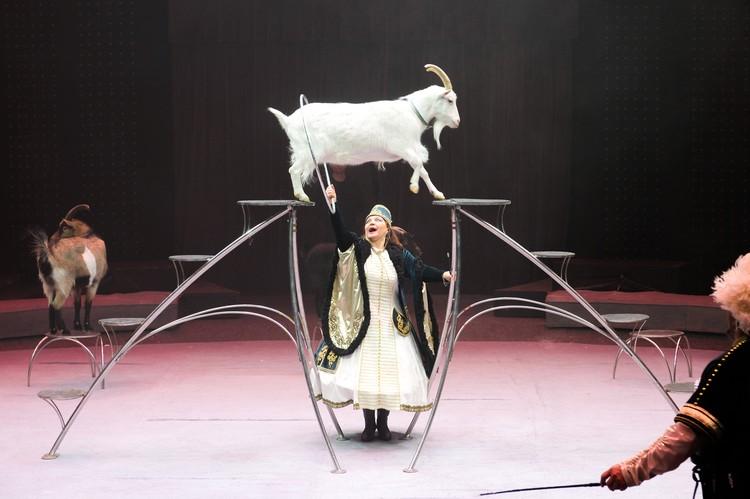 Номер с козами под руководством заслуженной артистки РФ Ирины Левицкой.