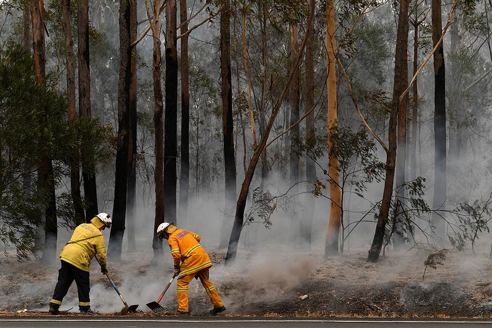 Для борьбы со стихией проведена крупнейшая в современной истории мобилизация вооружённых сил страны: на помощь пожарным переброшено три тысячи резервистов. Фото: REUTERS