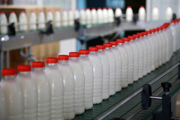 Все магазинное молоко проходит на заводе особую проверку и термическую обработку.