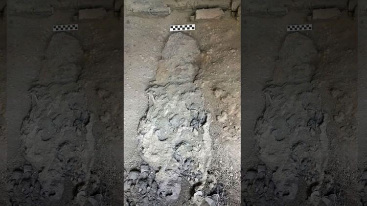 Останки, среди которых был найден мозг, превратившийся в стекло.