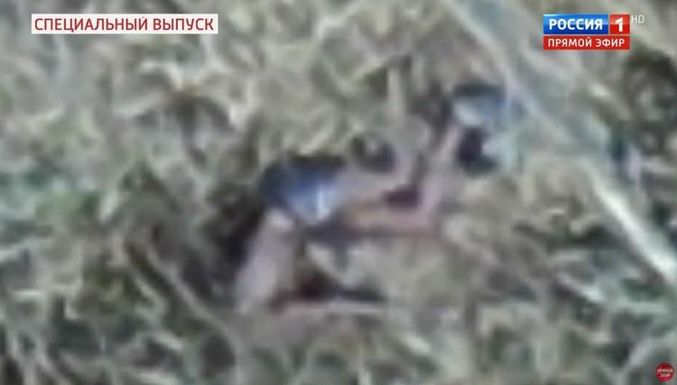 Тело, обнаруженное на кадрах съемки с квадрокоптера. Кадр из передачи телеканала Россия