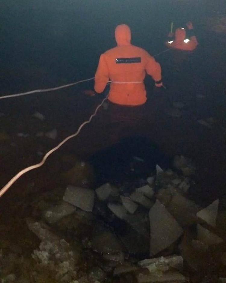 Пенсионер бросился в воду за собакой Фото: поисково-спасательный отряд Тосно