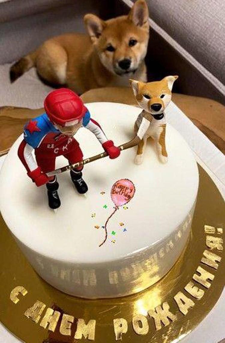 Именинный торт, увенчанный фигурками самого Ивана и их любимца - собаки породы сиба-ину Фокси.