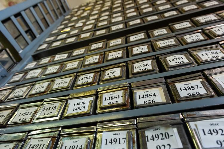 За годы, минувшие со смерти Николая Вавилова, собранная им коллекция разрослась до 320 000 экземпляров.